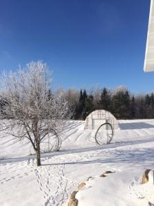 Beautiful snowy day